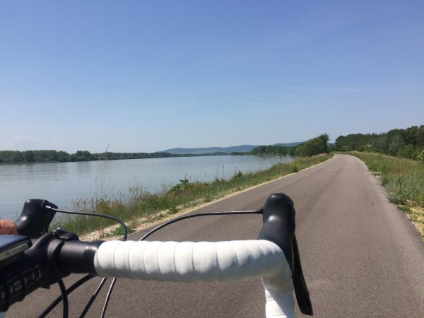 Donauradweg bei Zwentendorf