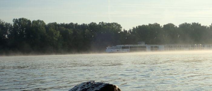 Ein Kreuzfahrtschiff auf der Donau bei Zwentendorf